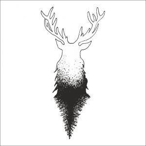 Z lesa - jelen