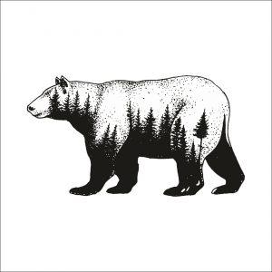 Z lesa - medvěd